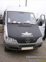 Аренда Автобус с водителём Спринтер 313 (18 мест) в г. Хмельницкий