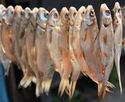Продам рыбку сушено-вяленую окунь,  плотва,  лящ, судак,  опт и мелкий опт