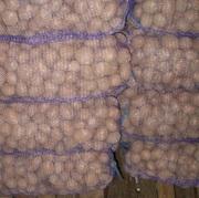 Продается бюджетный картофель